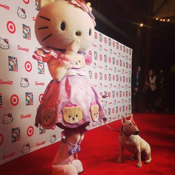 Hello Kitty & Bullseye – Hello Kitty Con – Los Angeles, CA